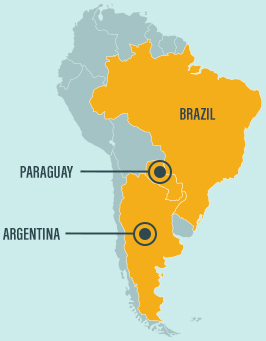 Map of Latin America where we focus on globally traded soft commodities with high levels of associated degradation: beef and soy