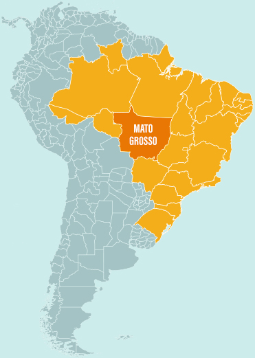 Map of Brazil with a particular focus on Mato Grosso where we are raising capital for cattle ranching
